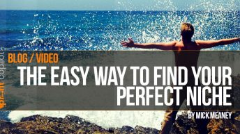 Finding the perfect niche